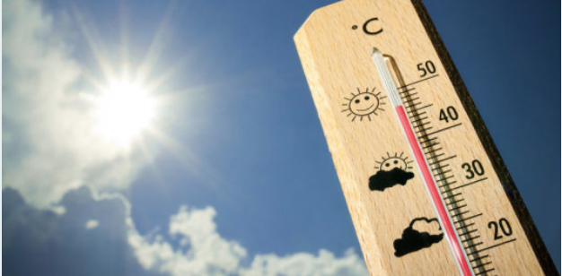 酷暑讓你曬黑曬傷了嗎?專家帶你吃對食物,從根本開始保護皮膚、徹底美白!